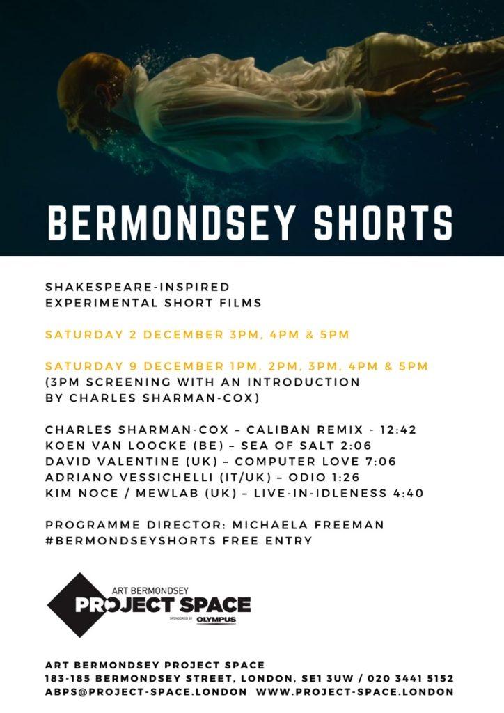 bermondsey-shortsjpg